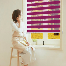 China guangzhou wholesale electric roller blinds curtain,roller blind zebra blinds