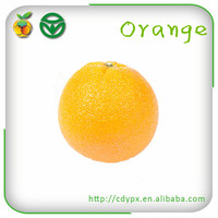Fresh Orange fruits Chinese Navel Orange Store
