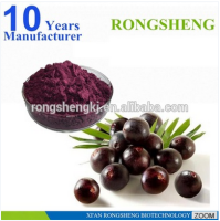 Hot Sale Freeze Dried Powder Organic Acai Berry
