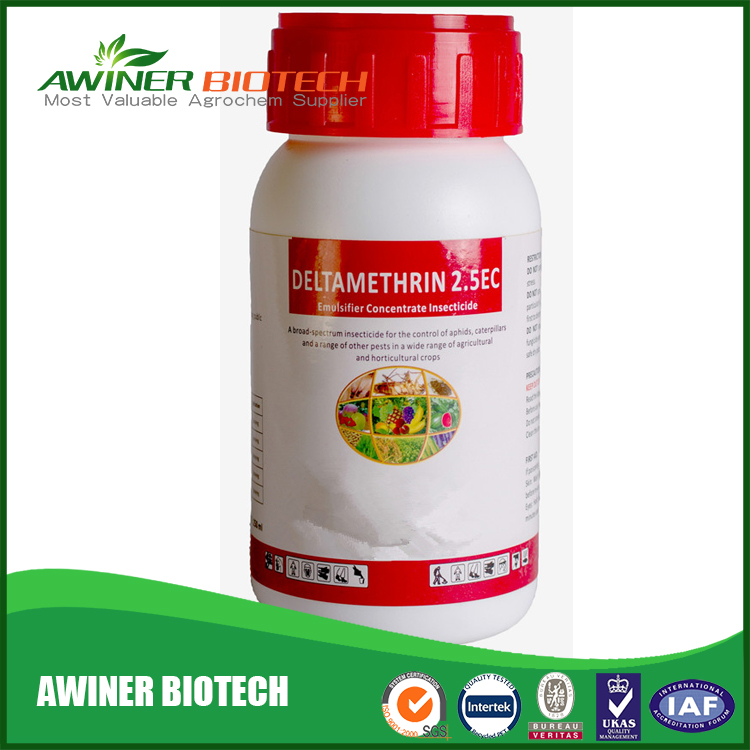 Prevention and control of health pests odorless insecticide