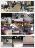PLYWOOD PRODUCTION LINE /FILM FACED PLYWOOD PRODUCTION LINE/PLYWOOD MACHINE