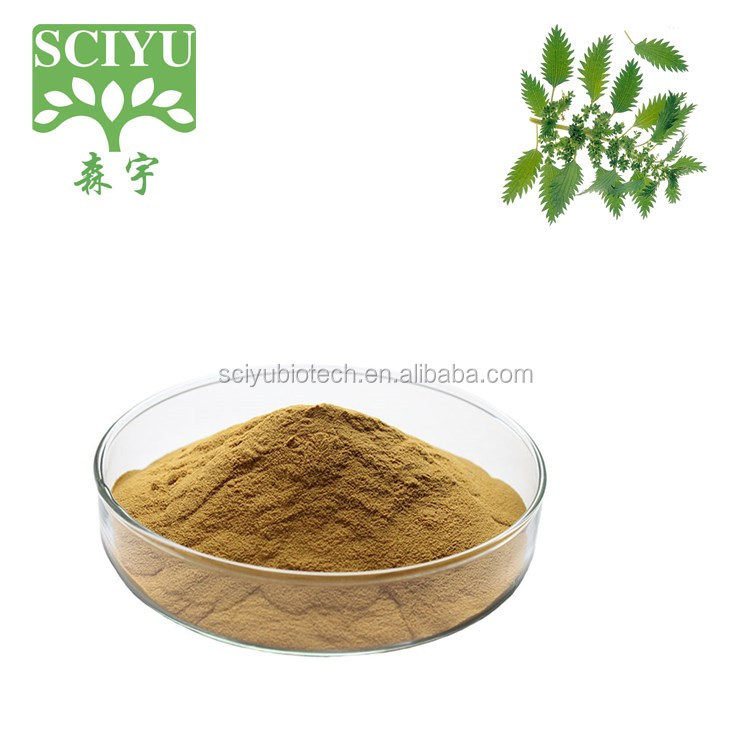 Factory Price 100% Natural Stinging Nettle nettle extract nettle root extract