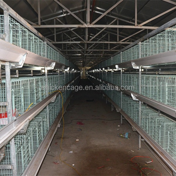 good quality cheap chicken coops/chicken cage for sale/chicken farm equipment