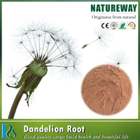 Pure Natural Powder Dandelion Extract Suppliers Specs: 4%-8% Flavonoids,Flavone, 3% -20%,Taraxasterols 1% to 20%