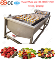 CE Approved Spare Parts Chili Pepper Washing Machine Price