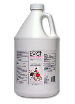 Lice Ladies EVICT, Natural Lice Treatment, 128oz Pro Refill for Mousse Applicator