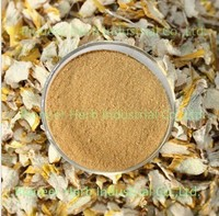 Favorable Price Dendrobium extract Dendrobine 1%