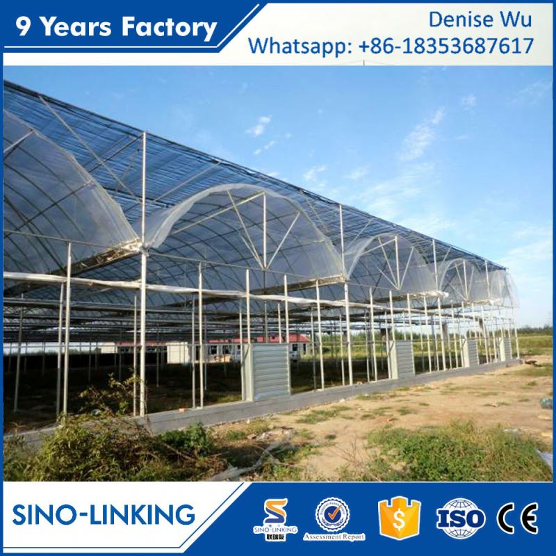 SINOLINKING Galvanized polytunnel green house for farming for agricultural