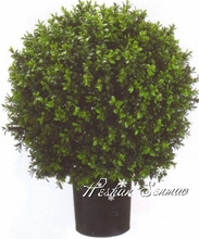 Hot sale high quality artificial topiary bonsai boxwood bosai cypress potted plant with cheap price