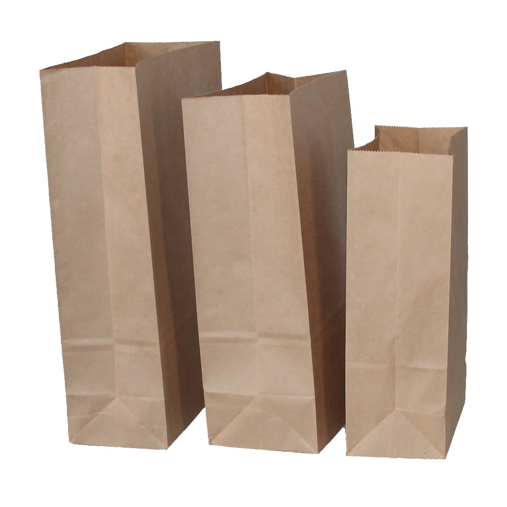 100% Recyclable 60gsm Brown Kraft Paper Shopping Bag