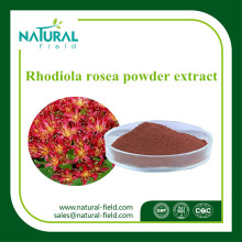 Chinese Factory Supply Rhodiola Rosea Powder Extract Salidroside