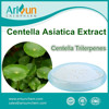 Centella Asiatica Extract Powder GMP Centella Triterpenes