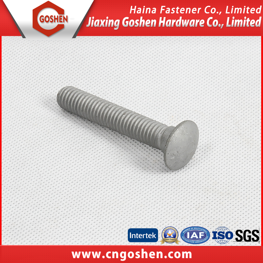 Gold supplier China grade 4.6 hdg guardrail bolt
