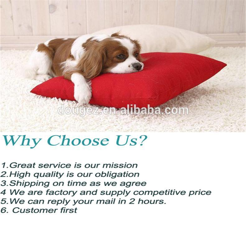 Hot selling Pet Cleaning suit,pet toothpaste and toothbrush suit,pet toothpaste with 2hours replied