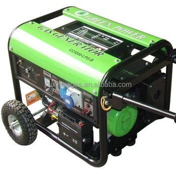 CE certified small biogas generator