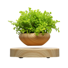 Magical levitating Plant Pot Magnetic floating Flower pot the best Christmas gift beyond your imagination