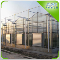 Long life Strong structure Greenhouse For Planting Growing