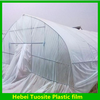Crop Greenhouse Film Agriculture Green House