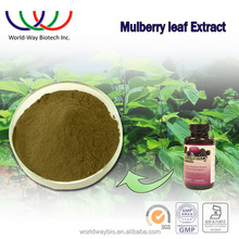 Free samples mulberry extract, Alibaba China supplier competitive products bulk mulberry leaf extract 1-DNJ powder