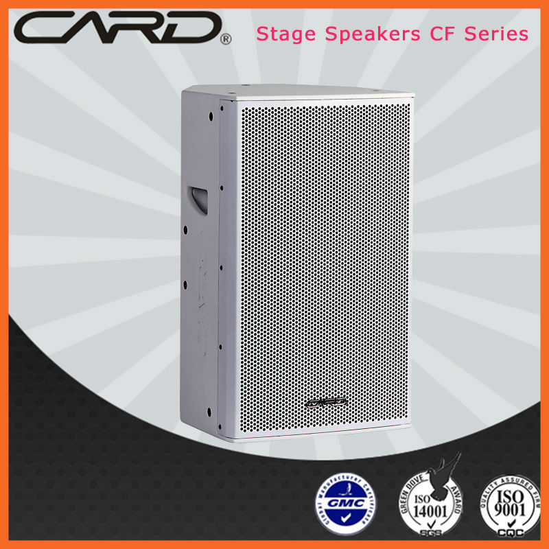 10'' 2 way full range mini digital music speaker box CF-10