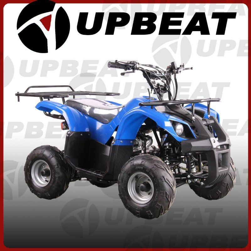 Utility ATV,Quads for Kids,Buggy for Sale