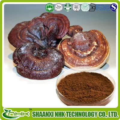 High quality Reishi mushroom extract triterpenes