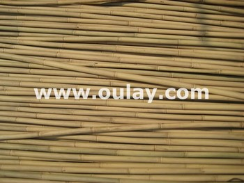 Tonkin bamboo canes HIGH QUALITY