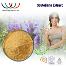 Natural scutellaria root extract,KOF-K Radix Scutellariae extract 95% baicalin,factory supply scutellaria extract