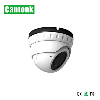 Factory Direct Sale Smart CMOS Sony Chip Fixed lens Ip Camera 2mp H.264 Dome