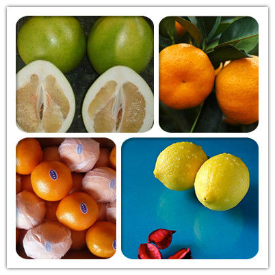 Fresh Orang (navel,mandarin,lugan,polemo,lemon)
