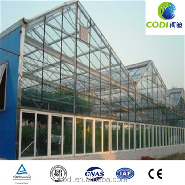 Fashionable Quality Glass Greenhouse for Modern Agriculture/agricultural equipment greenhouses