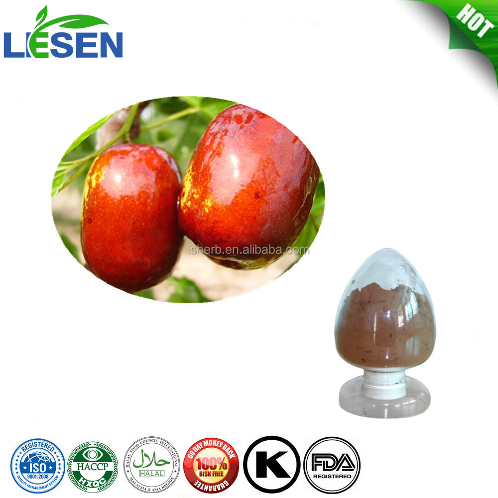 Semen Ziziphi Spinosae/Spine Date Seed Extract/Spine Date Seed P.E.
