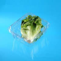 clamshell packaging plastic vegetable box for refrigerator
