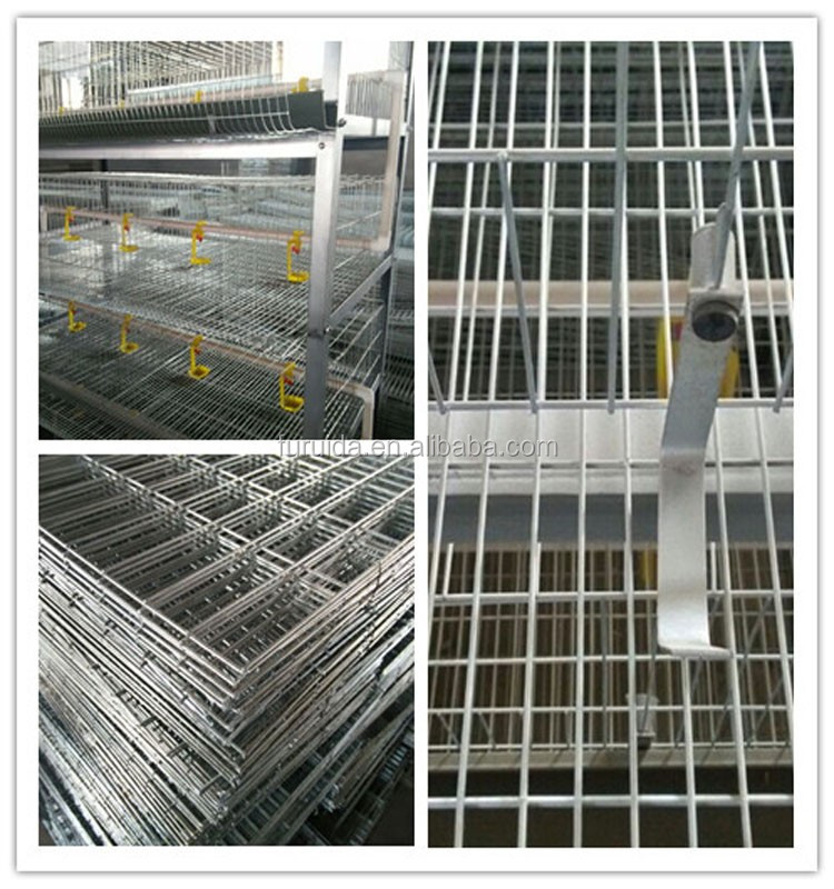 chrome plated chicken cage guangzhou