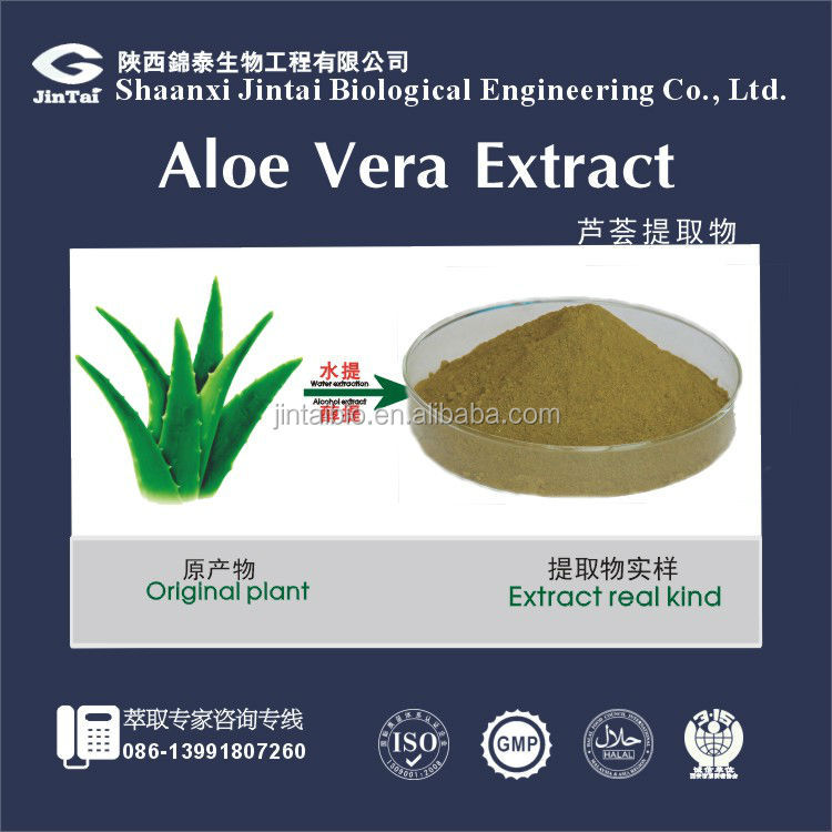 Hot Selling 100% Nature Aloe Vera Extract