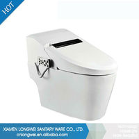 Automatic flush exclusive design toilet and sink