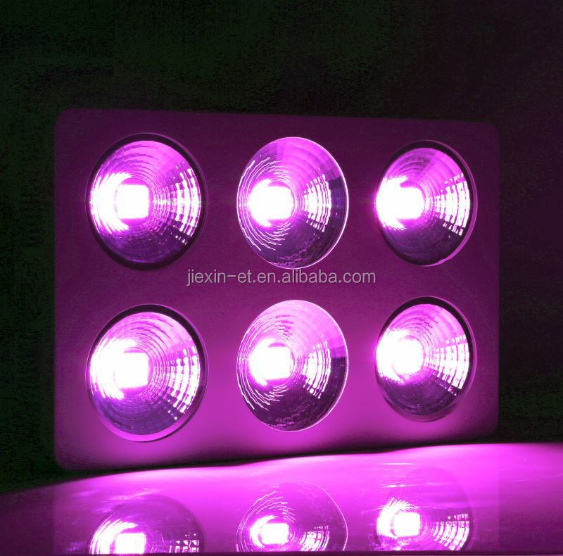Full Spectrum COB Led Grow Light For Plant , Cheap 600w/1200w Led Grow Light For Sale , Horticulture Led Grow Ligting