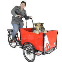 CE family 6 speeds bakfiet electric motorized cargo trike tricycle for shopping