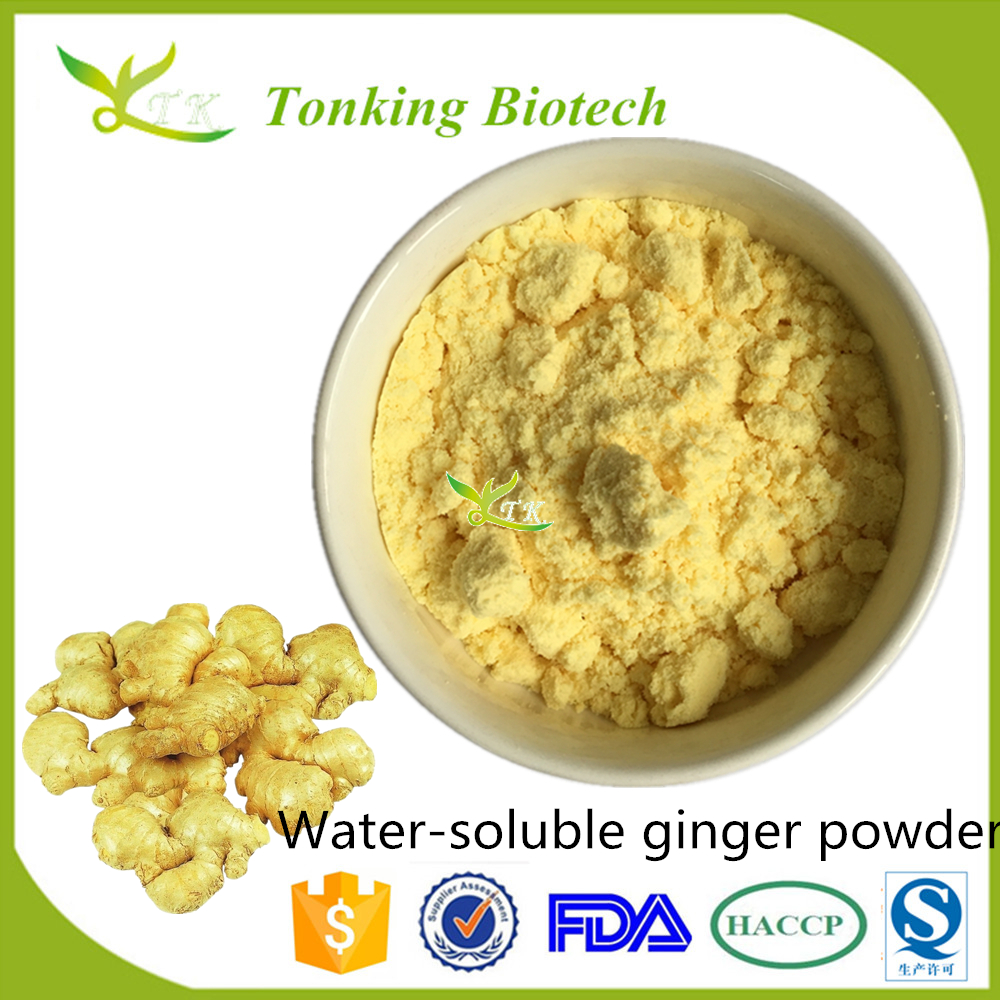 Ginger Extract Powder Drink