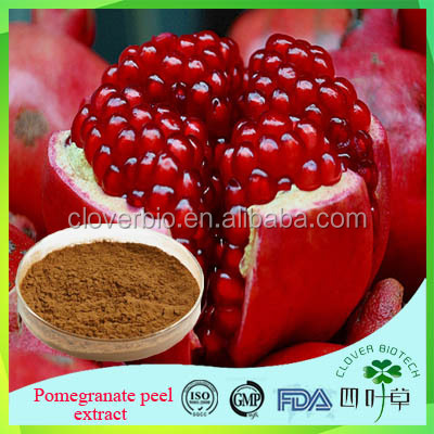 2016 hot selling natural pomegranate peel extract ellagic acid with antioxidant effect