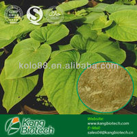 Food Additive from Chinese Kavalactones Powder