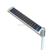 Integrated Outside Solar Decorative Garden Lights 20W Factory Warm White