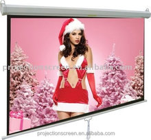 PVC matte white manual projector screen with CE certificate