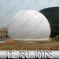 Amoco Company Flexible Biogas Storage, Bio Bag For Biogas Projects