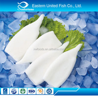 china seafood wholesale health frozen pure white squid tube u5 u7 u10