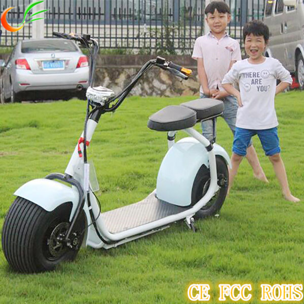 Direct Marketing 18 Inch 1000W Harley 2 Wheel Scooter With Lcd Display