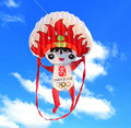 soft inflatable power kite