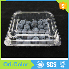 125g Blueberry food fruit packaging boxes shaped container