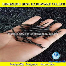 Low Price Galvanized Concrete Nail Black Steel Nail For Construction