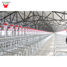 High quality automatic auger chain pig feeding system for sale